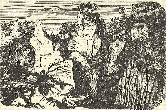 szikla kakas